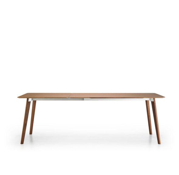 Table Transalpina Punt